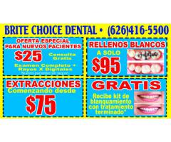 BRITE CHOICE DENTAL