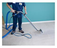 """****""""SPRING CARPET CLEANING""""****"""