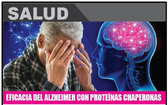 EFICACIA DEL ALZHEIMER CON PROTEÍNAS CHAPERONAS